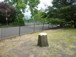 Battersea Park to be severely damaged due to Formula E